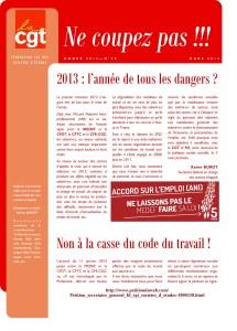 Ne Coupez Pas n°20 : 2013 : l'année de tous les dangers ?