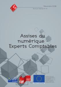 Brochure Fédérale n°33 : Assises du numérique – Experts Comptables