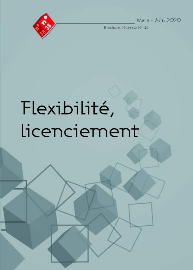 Brochure n°38 : Flexibilité, licenciement