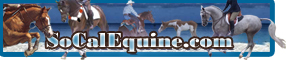 #1 Resource Guide in the California Equestrian Marketplace!