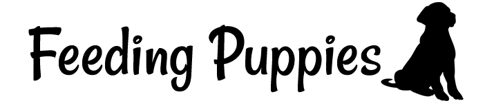 caloric feeding for puppies