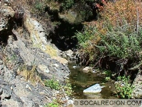 Elsmere Creek in Elsmere Canyon. Note oil seeps covering slope to the left.