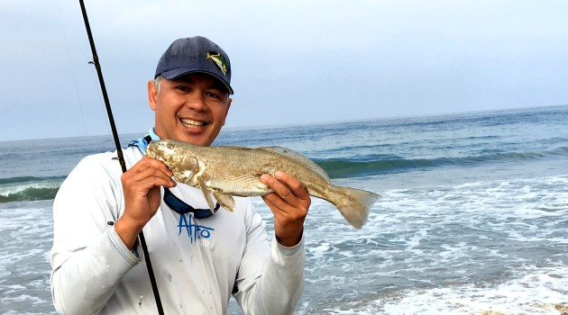 Socalsalty sportfishing adventures from southern for Surf fishing southern california