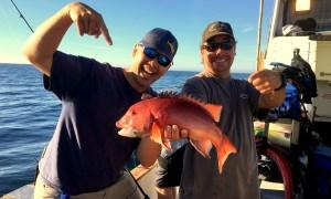 Top 10 Update – That Damn Fish