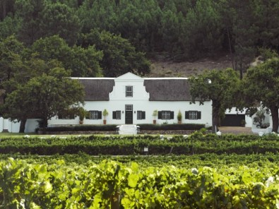 RicketyBridgeWinery_Franschhoek_Accommodation_Gallery-36