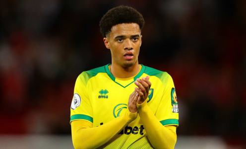 Crystal Palace Look to Norwich's Jamal Lewis to Help Bolster Their Defence