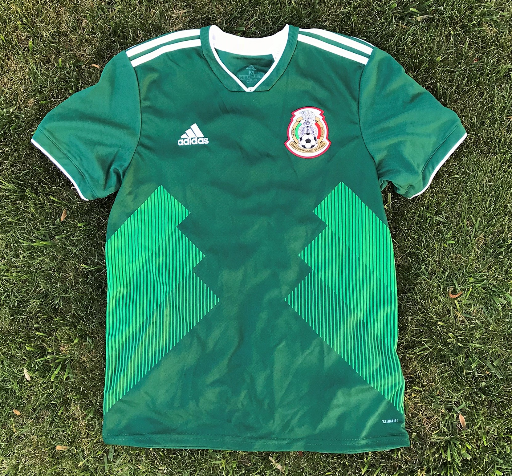 desaparecer munición O  World Cup 2018 Jerseys - How Do They Fit? | Soccer Cleats 101