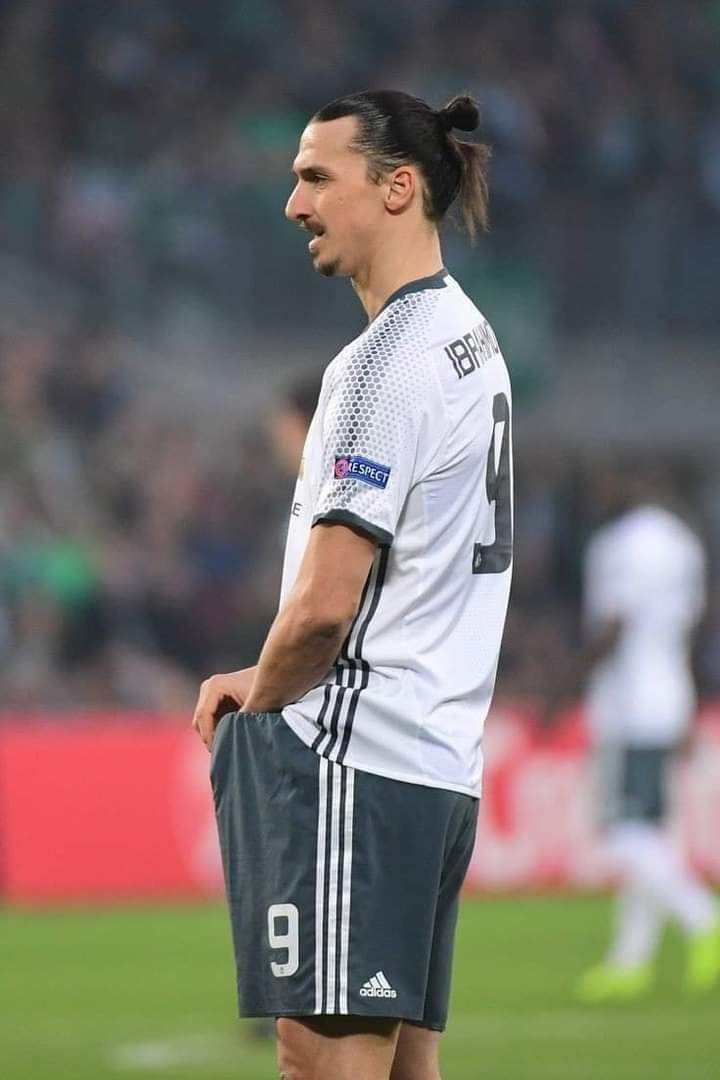 Zlatan Ibrahimovic wanted to be named after football when he retires
