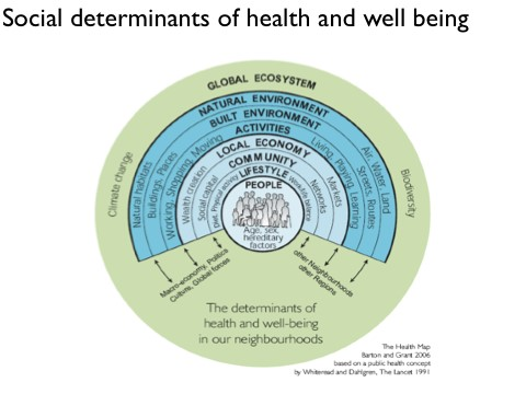 Social Determinants of health and well being