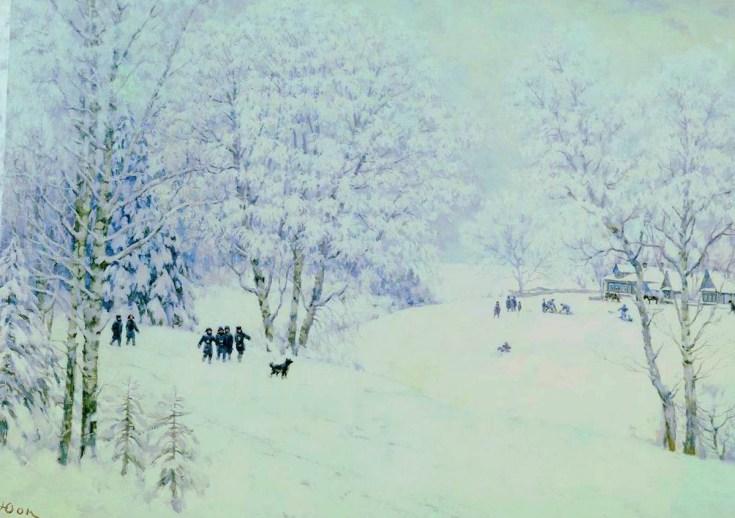 русская зима в подмосковной деревне Лигачево