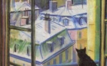 черный кот на окне