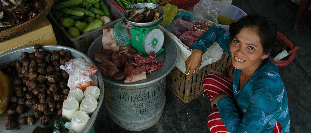 AusAID_2005;_Globalisation_and_Trade;_Markets_and_Shops;_Microfinance;_People;_Vietnam;_Women_(10667336805)