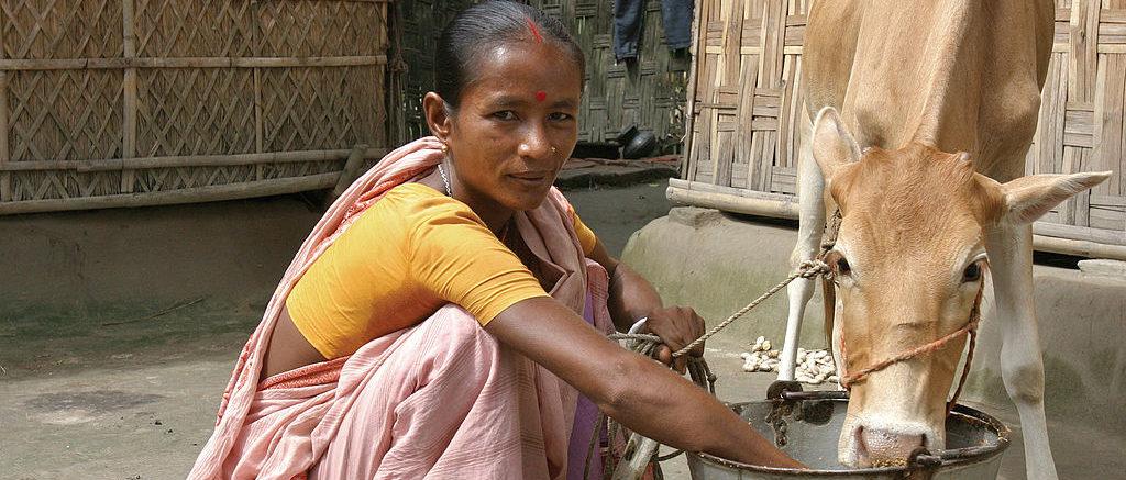 Bangladesh_microfinance_(10676772556)