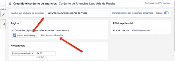 Lead Ads Paso 3