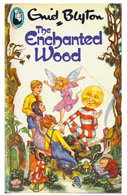 Image result for The Enchanted Wood by Enid Blyton.