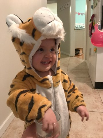 tiger costume, dad blog, top dad blogs, top parenting bloggers in canada, the best dad bloggers, vancouver, vancouver bloggers, social influencers in canada