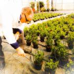 PSX 20150323 141349 150x150 Attività di formazione e conoscenza florovivaistica