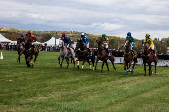 far hills horse race (26)