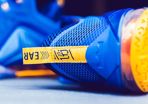 Nike-LeBron-12-Low-Entourage-5