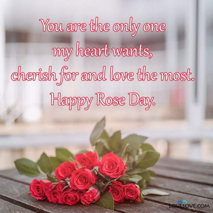 Happy Rose Day Janu Image, Happy Rose Day Jaan Image, Happy Rose Day Jaan, Happy Rose Day Love Images, Happy Rose Day Images For Love, Happy Rose Day Love, Happy Rose Day My Love Images, Happy Rose Day Sms,