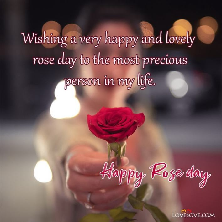 Quotes On Happy Rose Day, Happy Rose Day Images With Quotes In Hindi, Happy Rose Day Quotes For Him, Happy Rose Day Quotes For Crush, Happy Rose Day Quotes My Love,