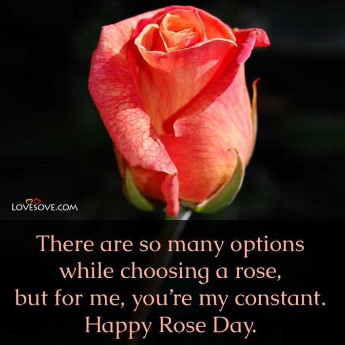 Quotes On Rose Day For Friends, Rose Day Quotes For Friends, Rose Day Quotes For Boyfriend, Rose Day Quotes For Husband In English, Heart Touching Rose Day Quotes,