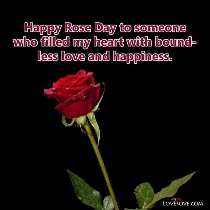 Rose Day Quotes Images, Rose Day Special Quotes, Pics Of Rose Day With Quotes, Rose Day Special Quotes For Him, Rose Day Quotes For Husband In Hindi,