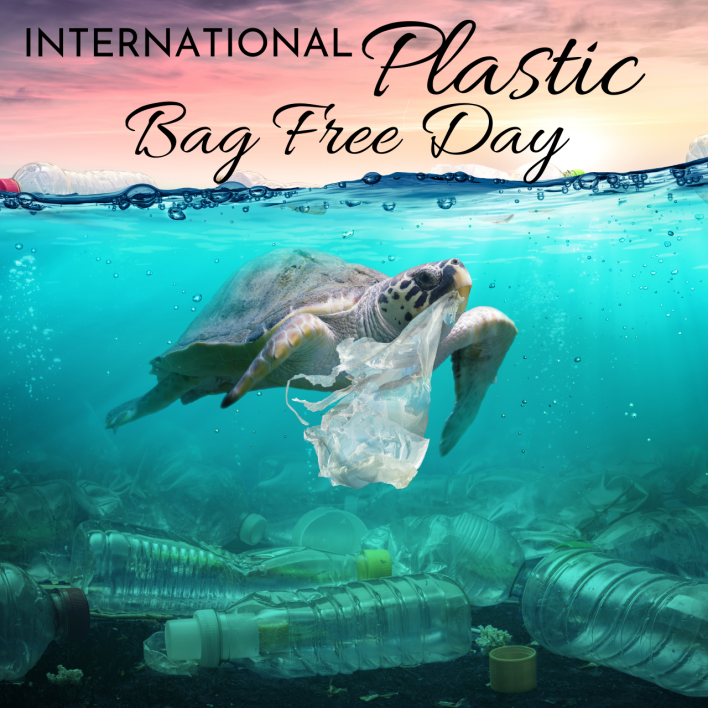 International Plastic bag free Day 2021 Quotes