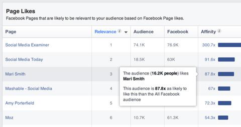 Facebook Publikum Einblicke Segment Affinität Popup