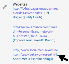 While you can no longer customize your LinkedIn profile links, you can include descriptions next to them.