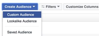 Haga clic en la opción de crear una audiencia personalizada de Facebook.