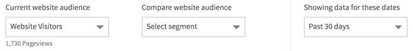 Wählen Sie die Website-Zielgruppe aus, die Sie in Ihrer LinkedIn-Website-Demografie anzeigen möchten.