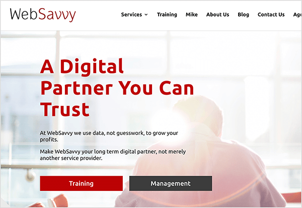 """This is a screenshot of the WebSavvy agency website. In the upper left is the agency name. In the upper right are the following navigation options: Services, Training, Mike, About Us, Blog, Contact Us. The web page background is a photo of the back of a man bent over working at a desk. The image is washed out with a lens flare caused by sun coming through a wall of window panes. A large red heading appears in the middle left of the page. It says """"A Digital Partner You Can Trust"""". Below the heading is the following text: """"At WebSavvy we use data, not guesswork, to grow your profits."""" The next line of text says """"Make WebSavvy your long term digital partner, not merely another service provider."""" Below this text are two buttons: a red button labeled """"Training"""" and a black button labeled """"Management"""". Mike Rhodes owns the WebSavvy agency."""
