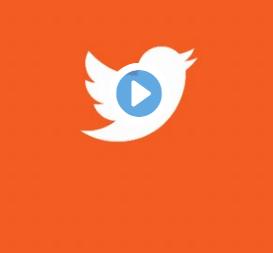 twitter-bird-square