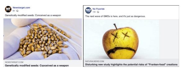Natural News example