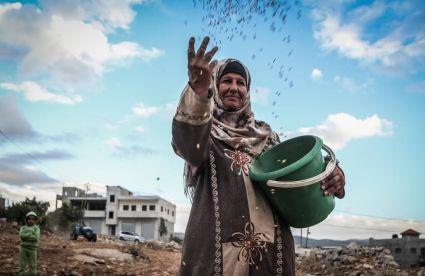 palestina uawc contadine