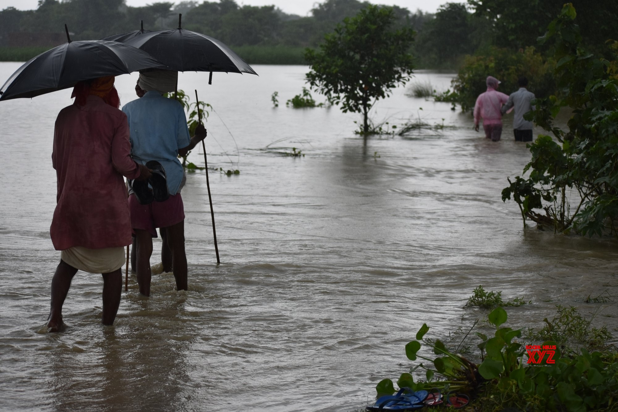 6 Bihar districts stare at flood as rains swell rivers
