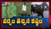 Farmers affected due to heavy rainfall in Peddapalli - TV9 [HD] (Video)