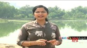 Special Focus on Rains in Telugu States  [HD] (Video)
