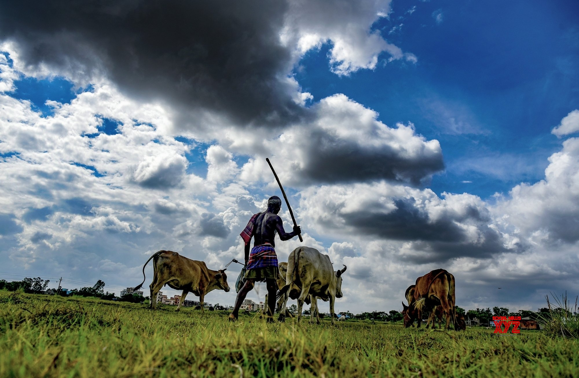 Indian agriculture: Maladies and remedies