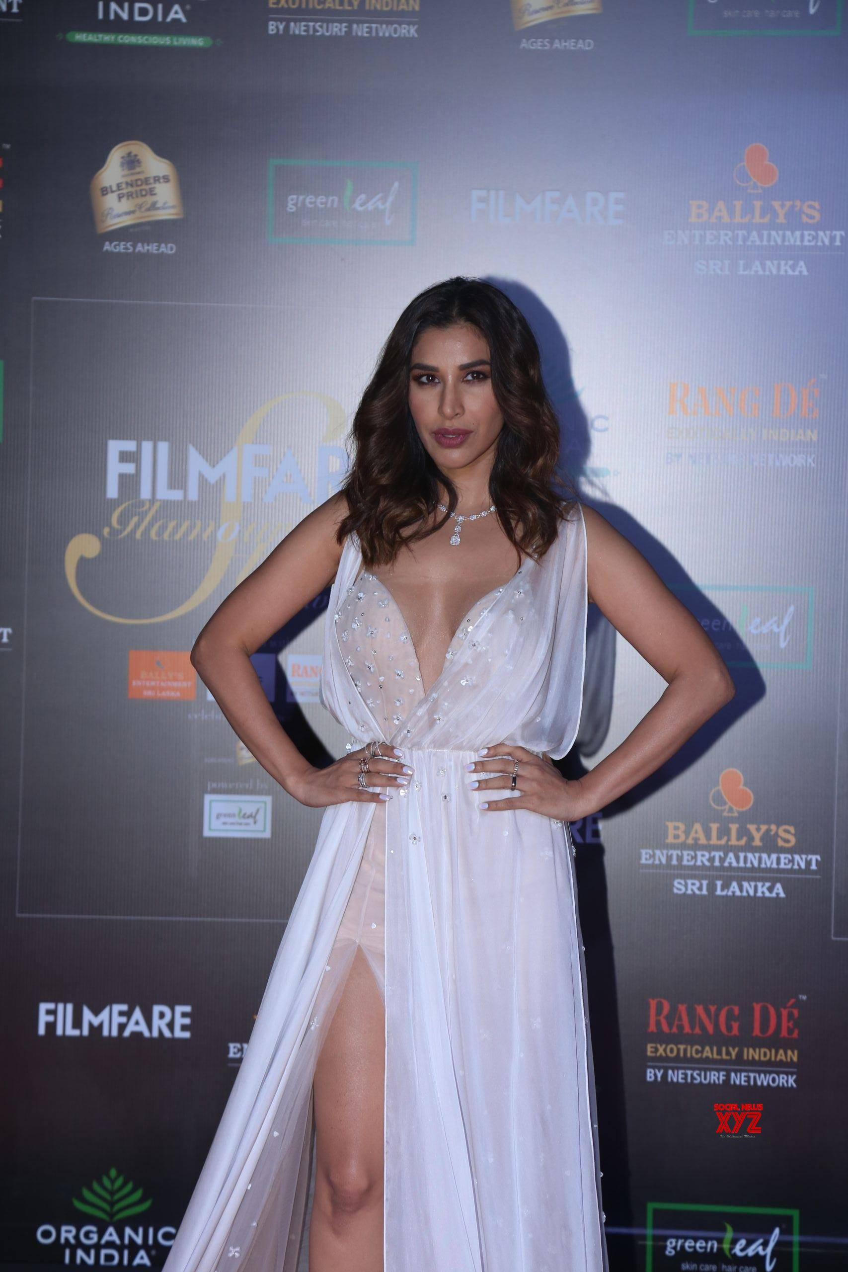 Actress Sophie Choudry Hot HD Stills From Filmfare Glamour And Style Awards 2019 Red Carpet