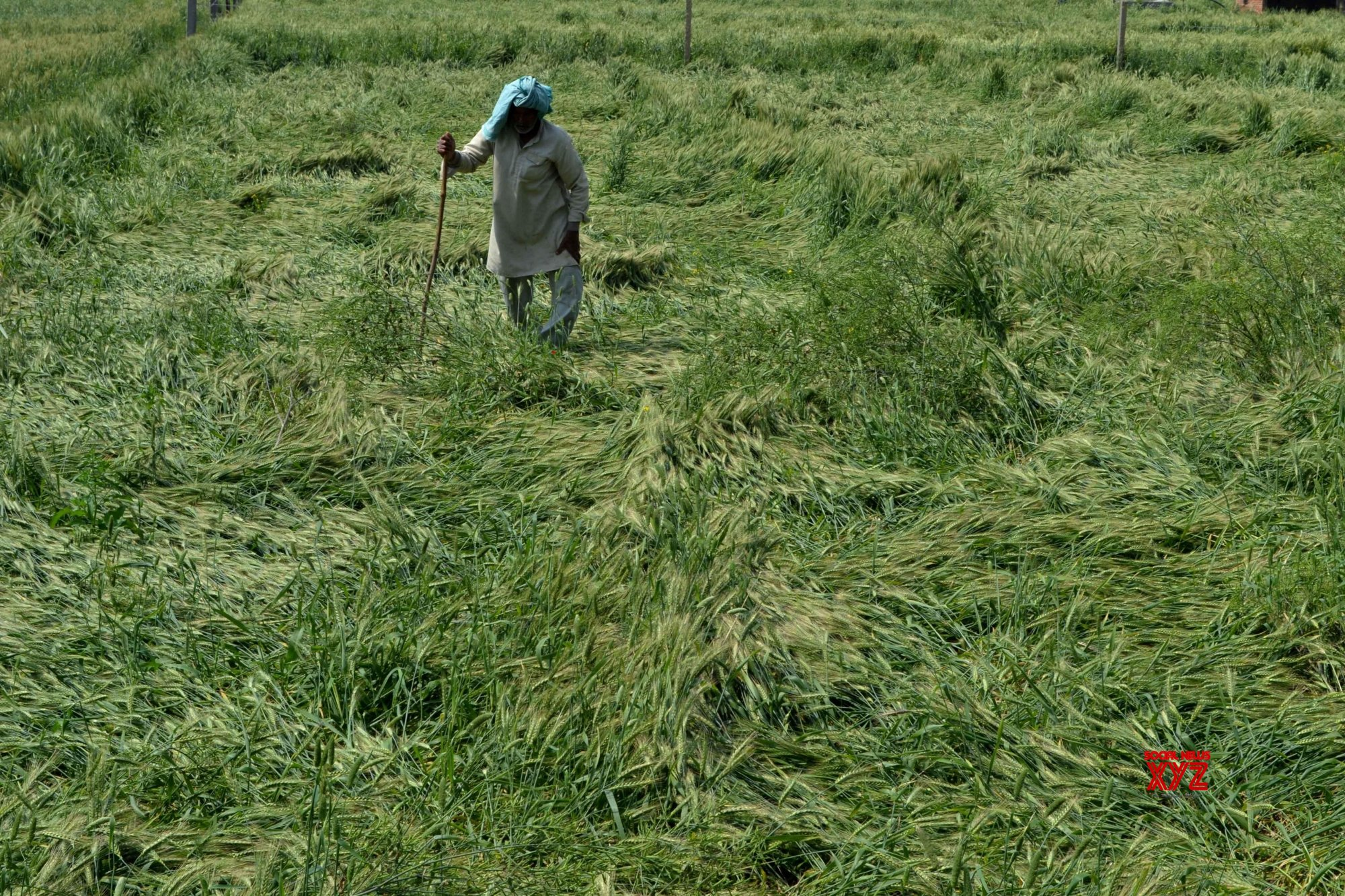 Bengal farmer dies in queue for crop loss compensation