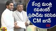 AP CM YS Jagan Meets Union Minister Ravi Shankar Prasad At Delhi (Video)