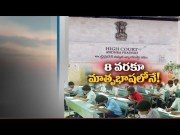 Mother tongue should be made compulsory 1 to 8 th Class   Centre govt  (Video)
