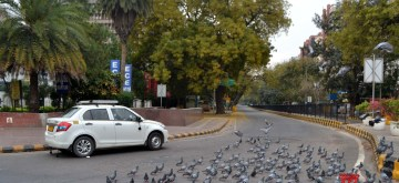 New Delhi: A four-wheeler passes by a deserted street occupied by a flock pigeons during complete lockdown imposed in 560 districts in 32 states and union territories across the country as precautionary measures to contain the spread of the coronavirus, in New Delhi on March 24, 2020. (Photo: IANS)