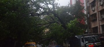Kolkata: Heavy rains accompanied by strong winds triggered by the impact of extremely severe cyclonic storm Amphan lash Kolkata on May 20, 2020. (Photo: Kuntal Chakrabarty/IANS)