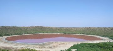 Buldhana: The world famous Lonar Lake, formed by a high velocity impact of a celestial body around 57,000 years ago, has changed colours from bluish-green to a bright baby-pink shade, astounding all, says Buldhana Tehsildar Saipan Nadaf. (Photo: IANS)