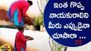 Congress MLA Seethakka Helps People In Planting Trees (Video)