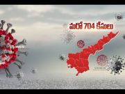 704 New COVID-19 Cases Reported in State | Total Cases Tally at 14,595  (Video)