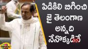 CM KCR Extraordinary Speech In Telangana Assembly Session (Video)
